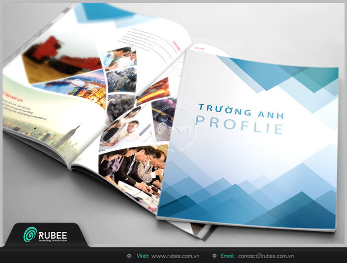 profile-truong-anh4